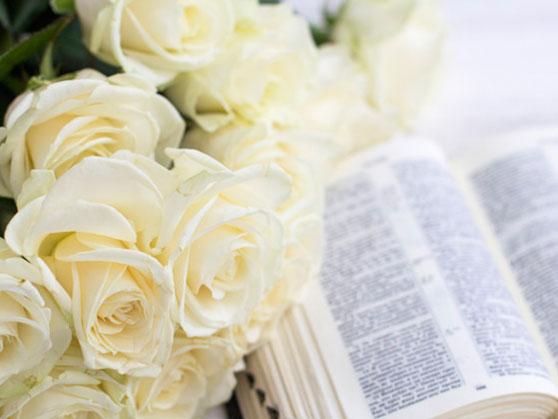 White roses for celebration of life ceremony